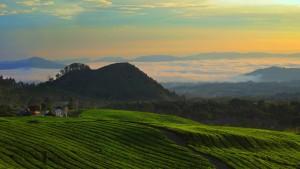 Bandung-and-vicinity-6212470-smallTabletRetina